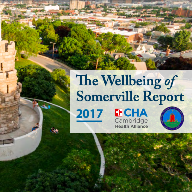 Wellbeing of Somerville Report 2017